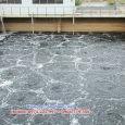 Bể điều hòa trong xử lý nước thải