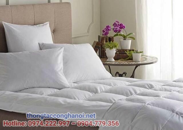 Thay ga trải giường