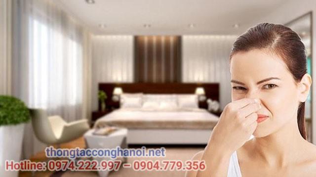 Vì sao phòng ngủ hay có mùi hôi?