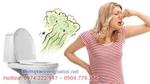 Bồn cầu bốc mùi hôi gây ảnh hưởng thế nào