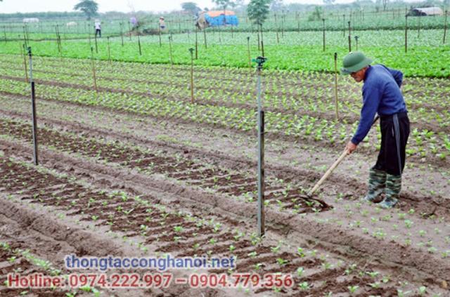 Chuyển đổi mô hình trồng trọt